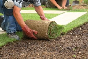 Landscaper Quakers Hill